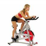 Sunny-Health-Fitness-SF-B901