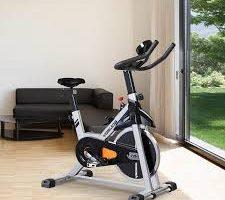 best home spin bike