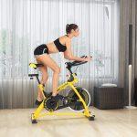 best indoor spin bike - ANCHEER Indoor Cycling Stationary Bike