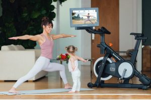 magnetic resistance spin bike