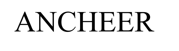 ▷ ANCHEER Bikes: A Company  that delivers excellence & innovation 2021